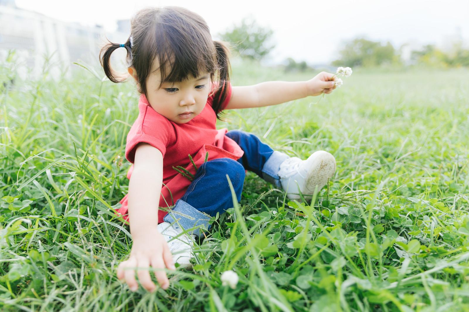 ほっこりアイテム 、子供の画像や動画が簡単に送れる共有ガジェット!